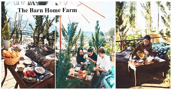 the_barn_home_farm_tophomestay